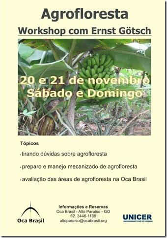 cartaz_curso_ocabrasil-nov-2010