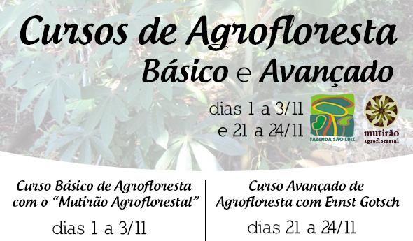 2013-cursos-fazenda-sao-luiz